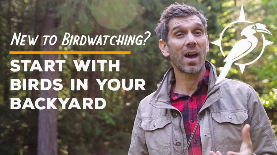 Start with Birds in Your Backyard [Video]