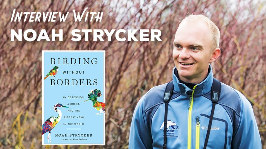 Birding Without Borders – An Interview with Noah Strycker