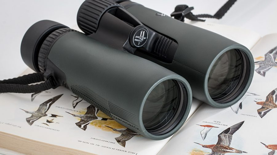 Birdwatching Binoculars for Beginners