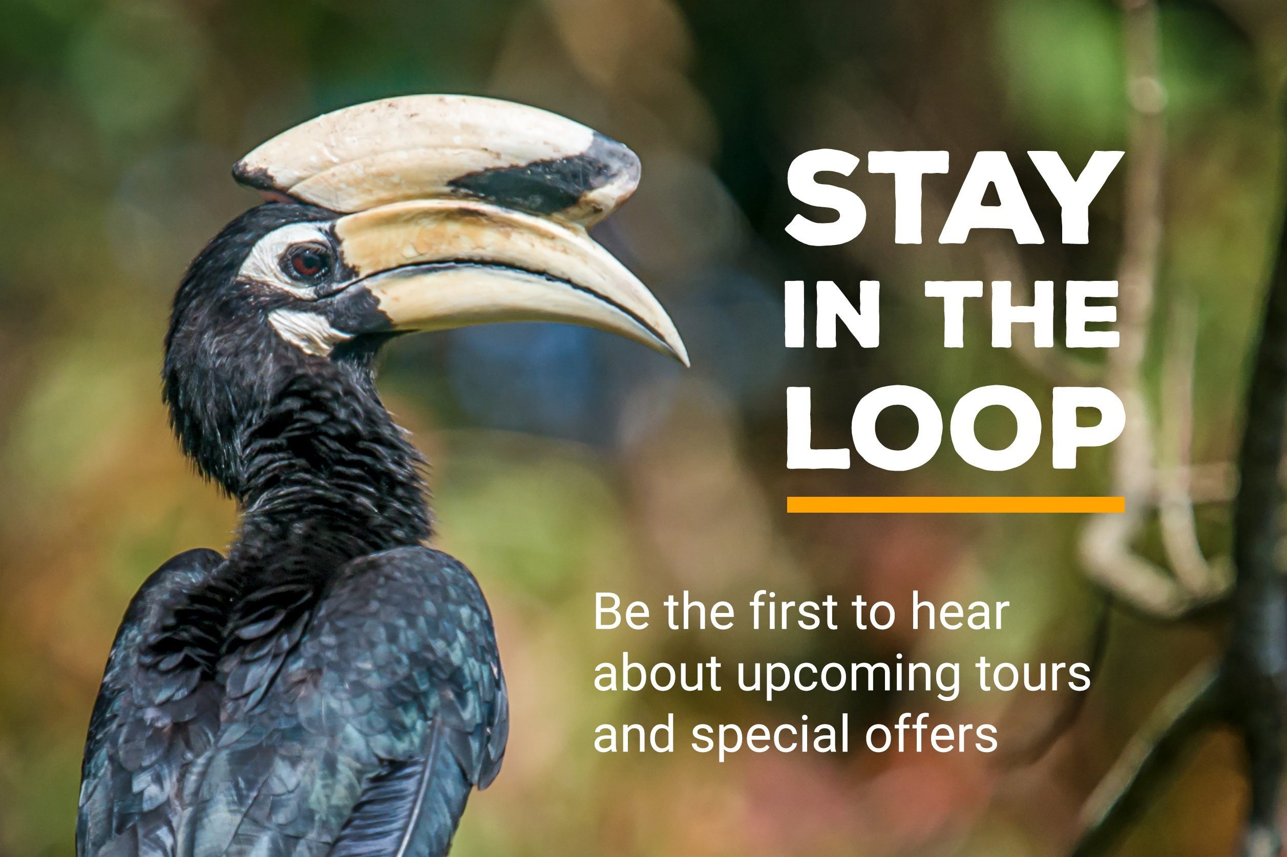 Mobile Apps for Nature Travel and Birding Trips