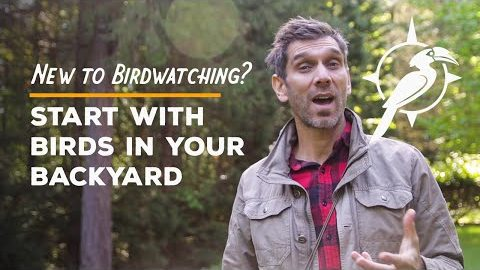 Start with Birds in Your Backyard